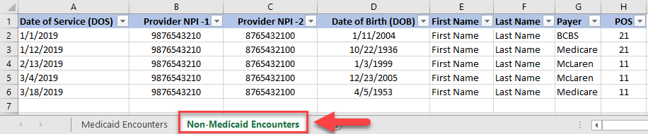Screenshot of spreadsheet example - Non-Medicaid Encounters tab selected